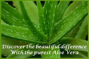 Slide 1 Aloe Leaf
