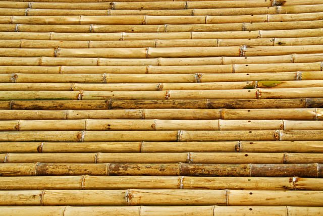 5110745 Bamboo Texture Jpg Simply Natural Products